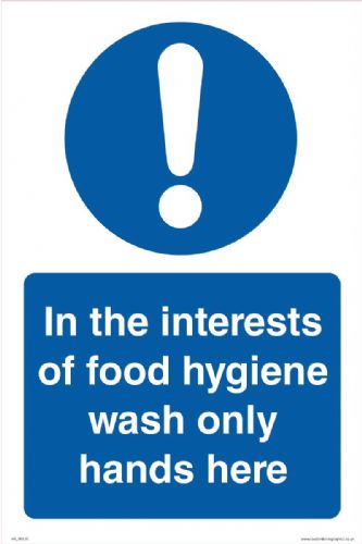 In the interests of food hygiene wash only hands here